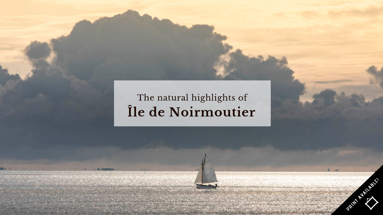 blog_claireonline.nl_headernoirmoutier.png
