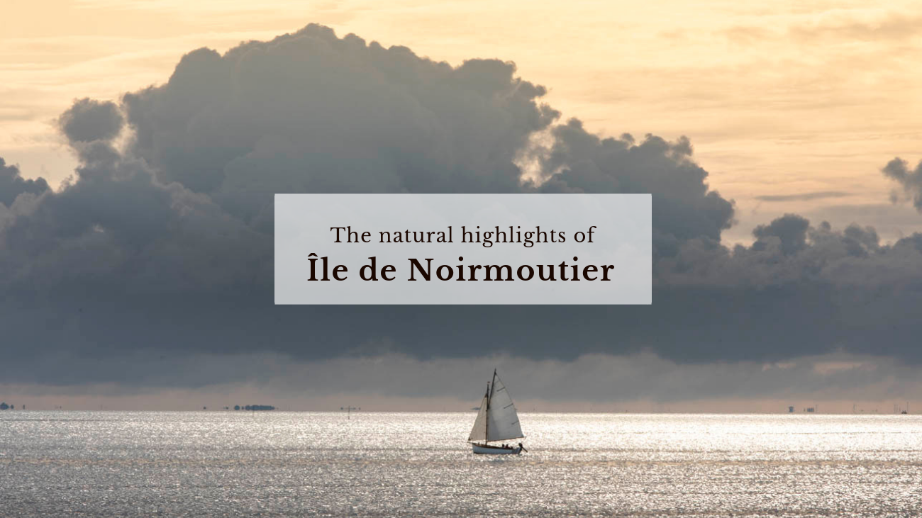 The Natural Highlights of Noirmoutier.png