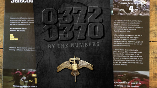 thumbnail-marine-raiders-by-the-numbers-publication.jpg