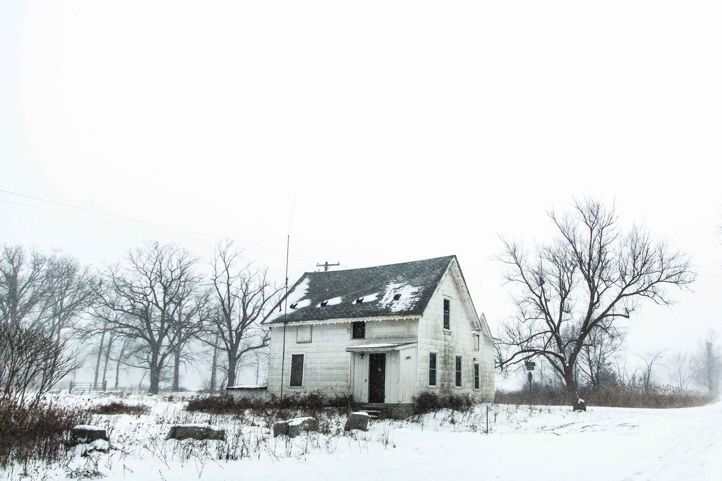 Winter_2019-11.jpg