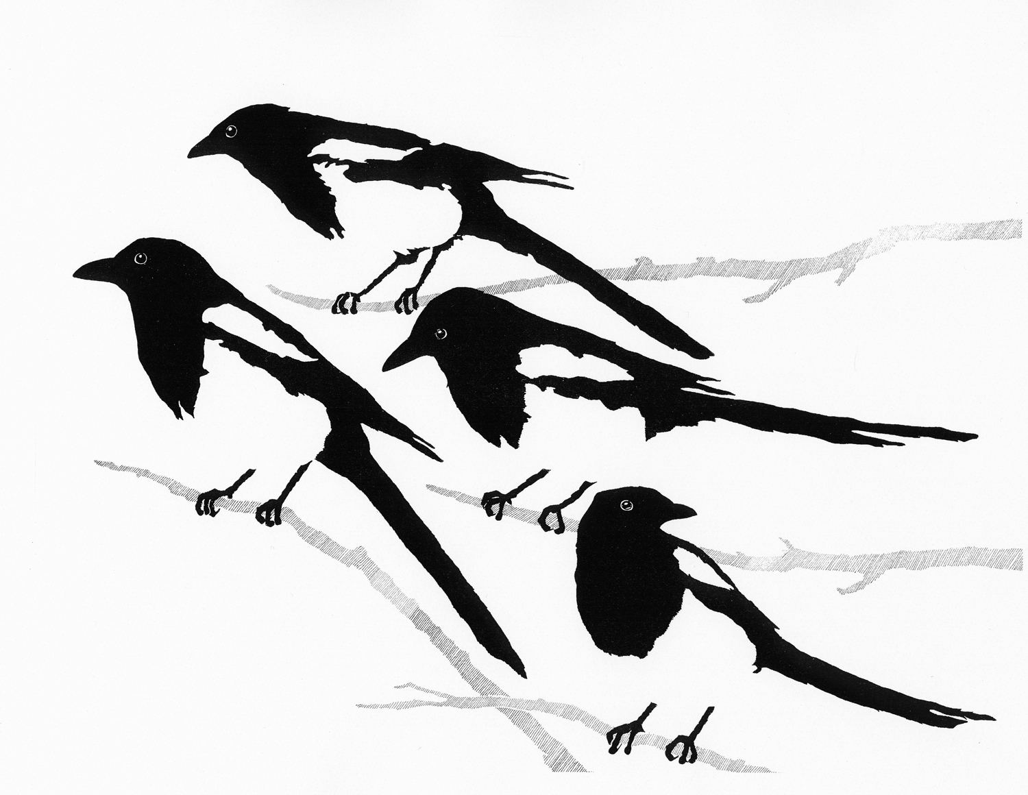 Black Feathers, White Air • © Fred Montague  $185 • Photolithograph • image 27 x 19 unmatted  Edition size: 880 • status: available