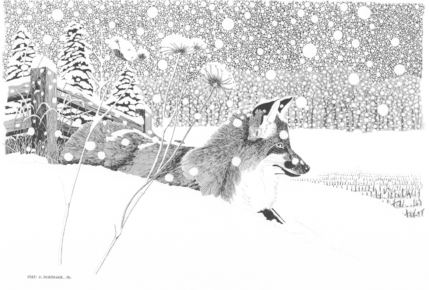 Silent Snow • © Fred Montague  Photolithograph  Status: Sold Out