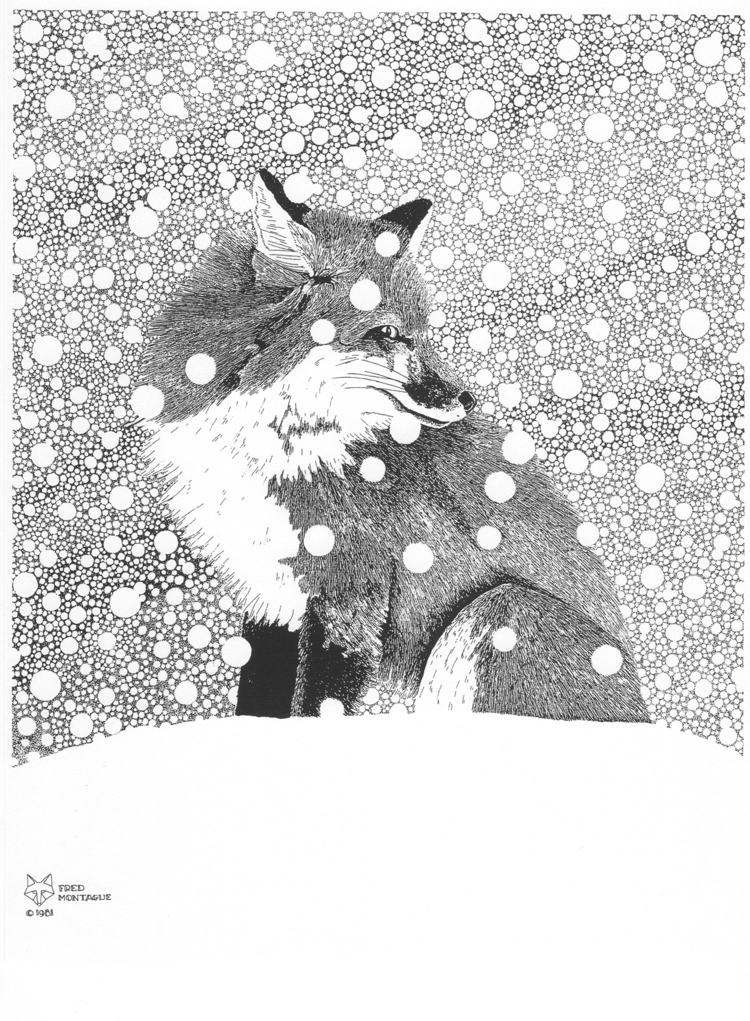 """""""Backtrack"""" (red fox), photolithograph by Fred Montague"""