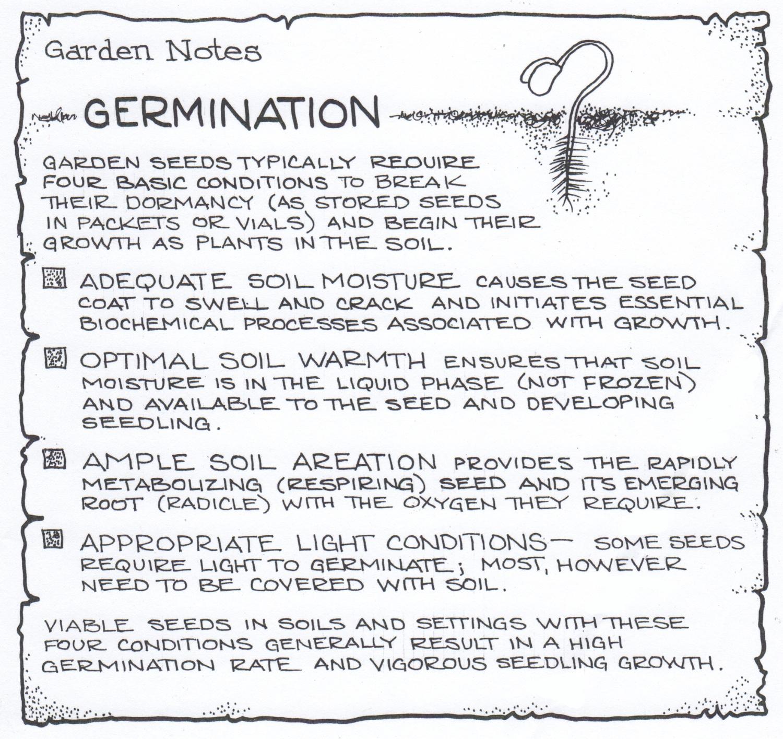 Garden notes: Germination.© Fred Montague