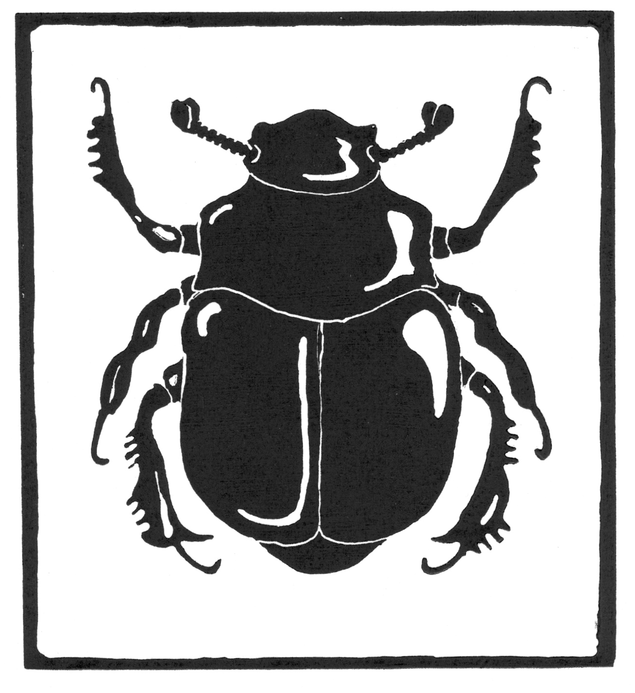 Scarab • © Fred Montague  $48 • image 6 x 5.5 • mat 12 x 12  Edition size: 88 • status: available
