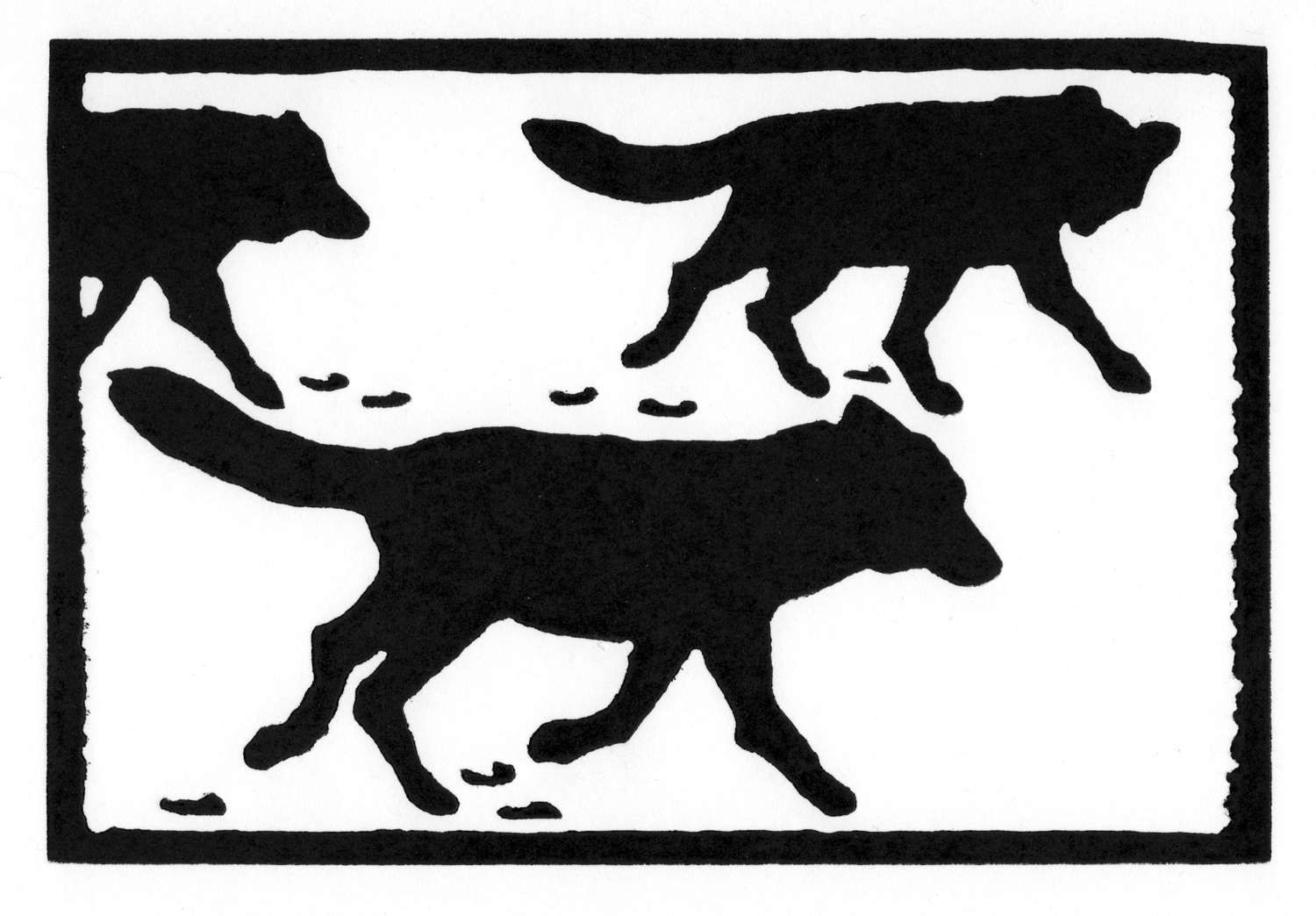 Wolf Pack - Alpha Pair • © Fred Montague  $48 • image 8 x 5.5 • mat 14 x 11  Edition size: 88 • status: available