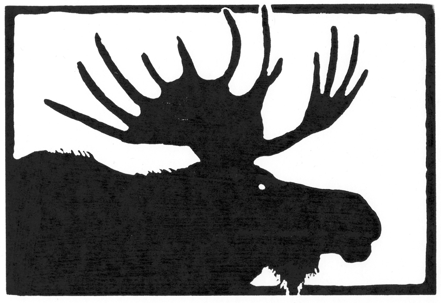 Bull Moose • © Fred Montague  $48 • image 8 x 5.5 • mat 14 x 11  Edition size: 88 • status: available
