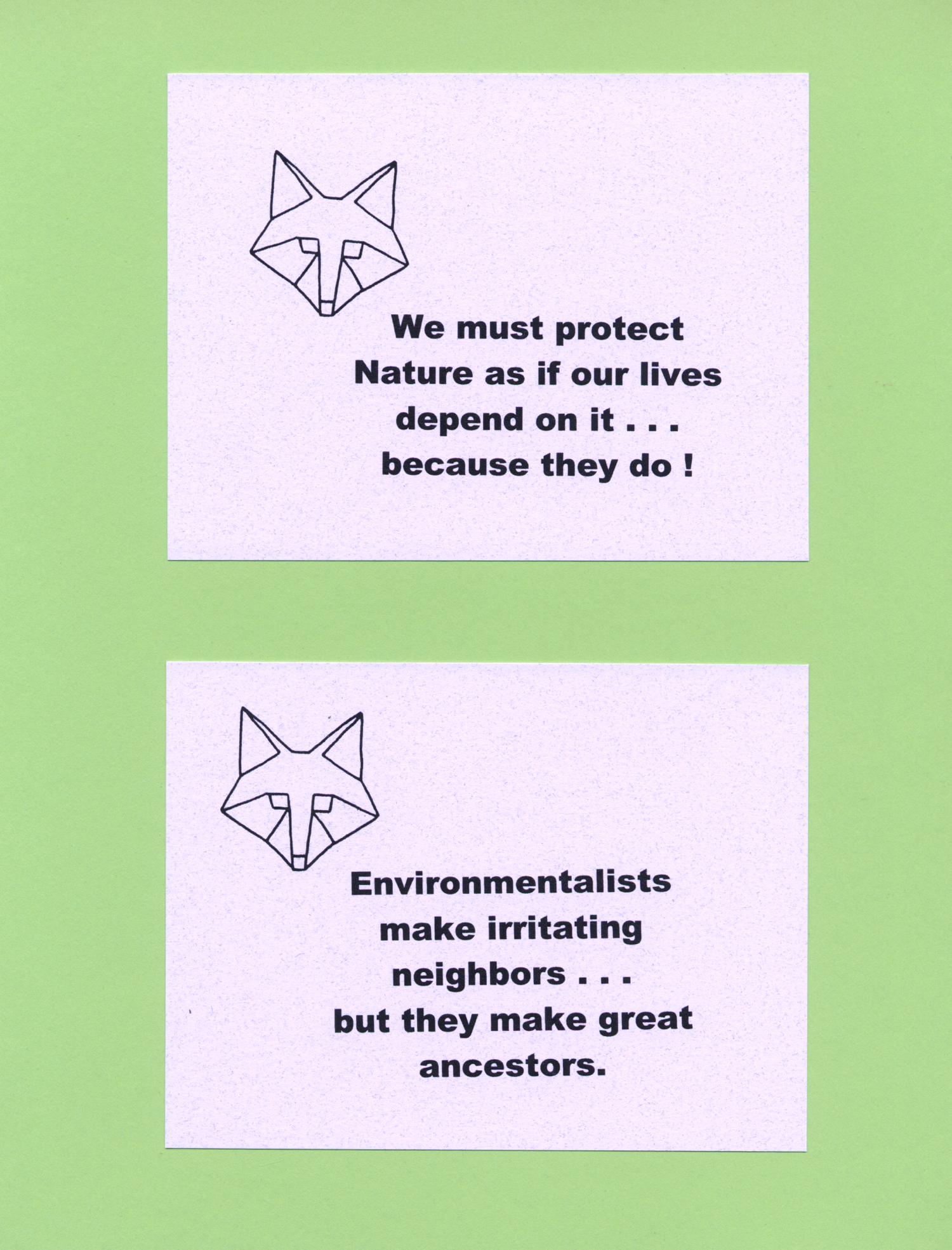 enviropolitico_notecards2