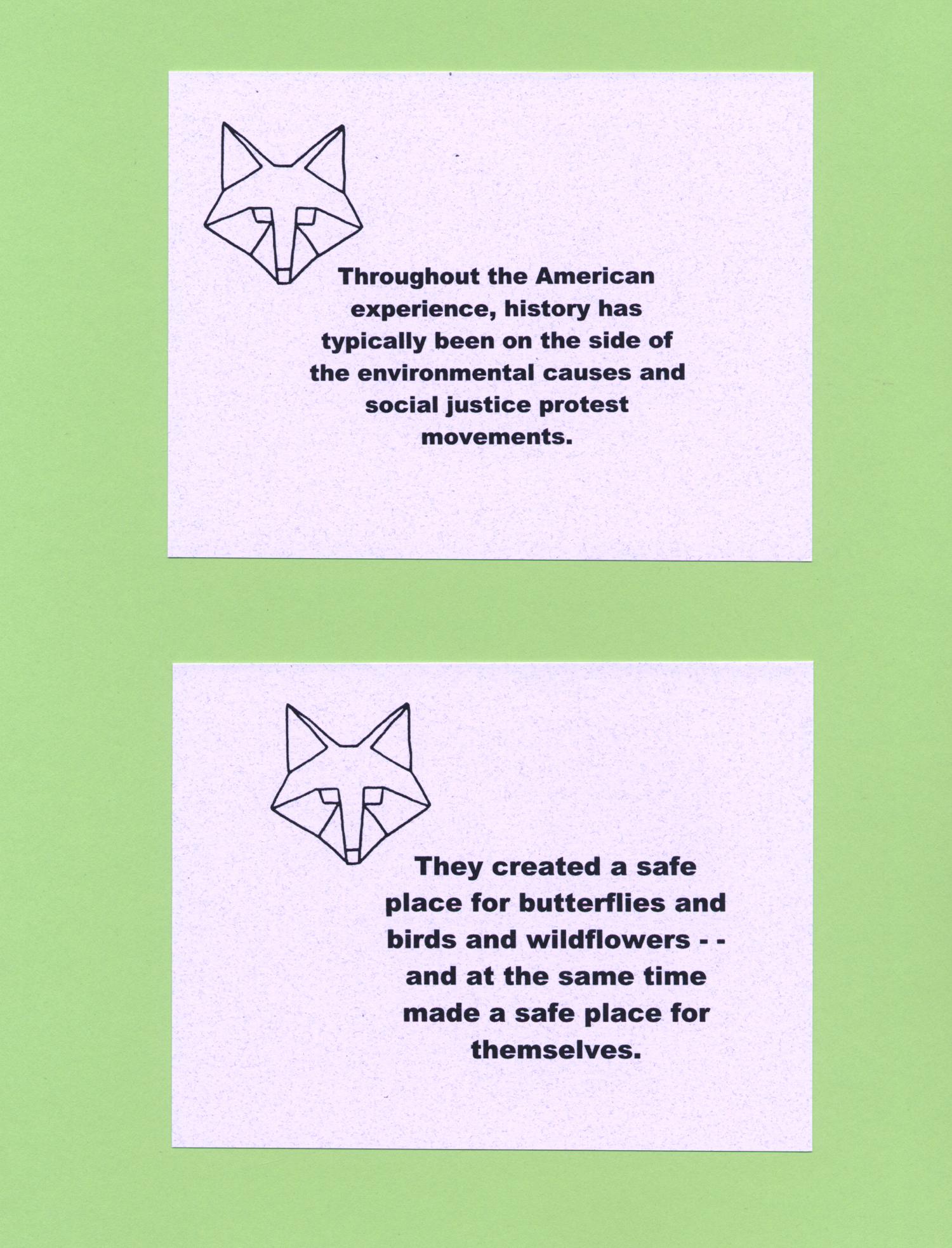 enviropolitico_notecards3
