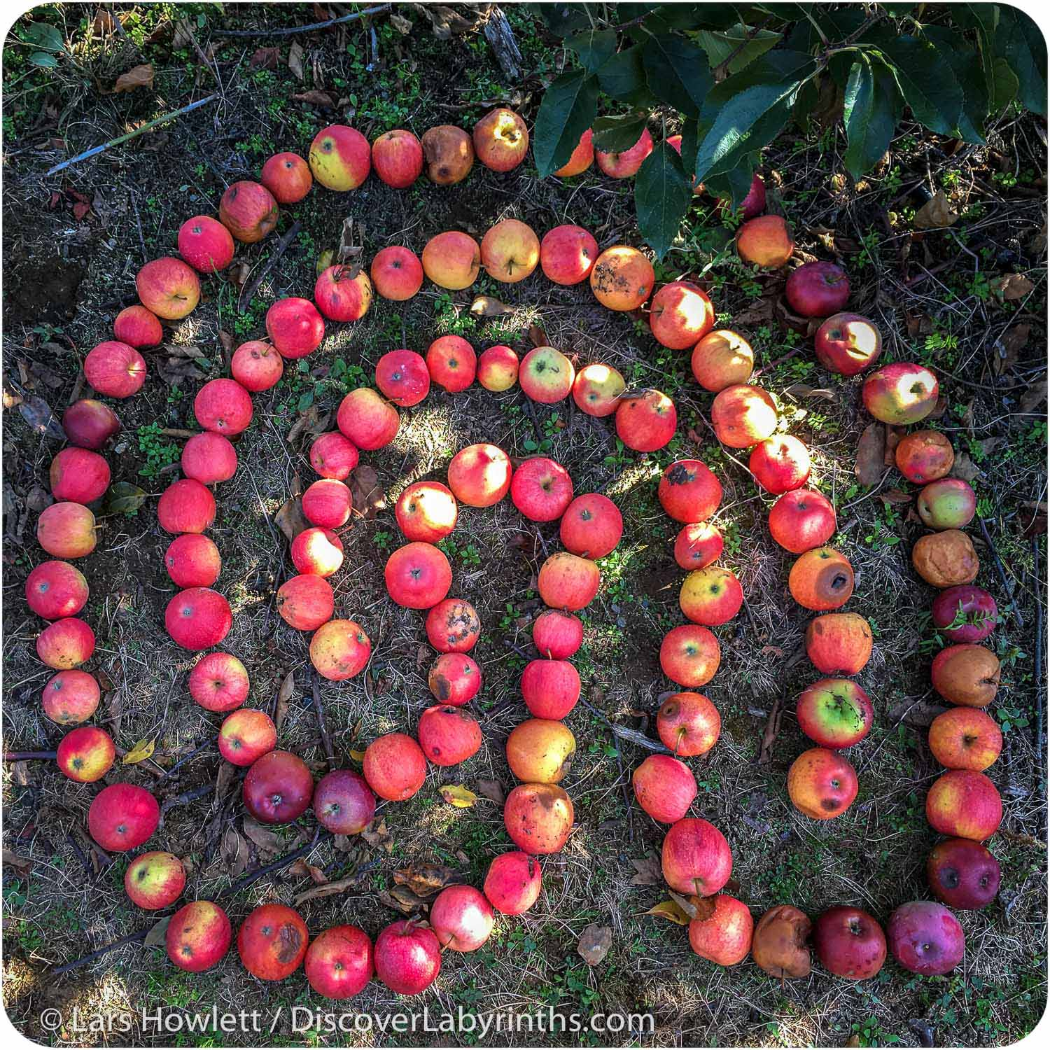 Apple Labyrinth