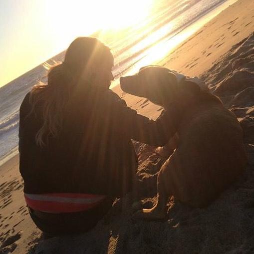 Forever my Cheeba R.I.P.  I love you Cheeba always and forever. #cheebacheebayall #bestpitever #alldoggotoheaven ❤️🐶🙏🏼👼🏼
