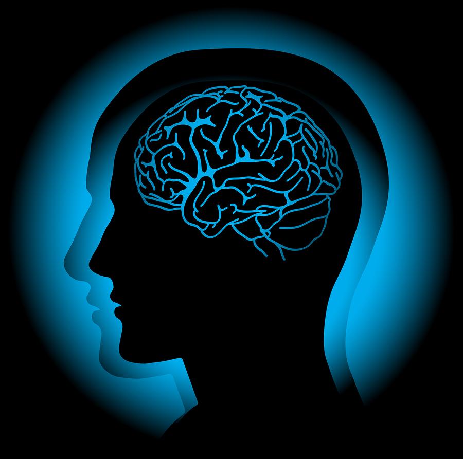bigstock-Brain-8193200.jpg