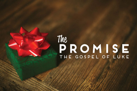 The Promise (Christmas Series 2012)