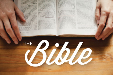 The Bible (Easter Series 2013)
