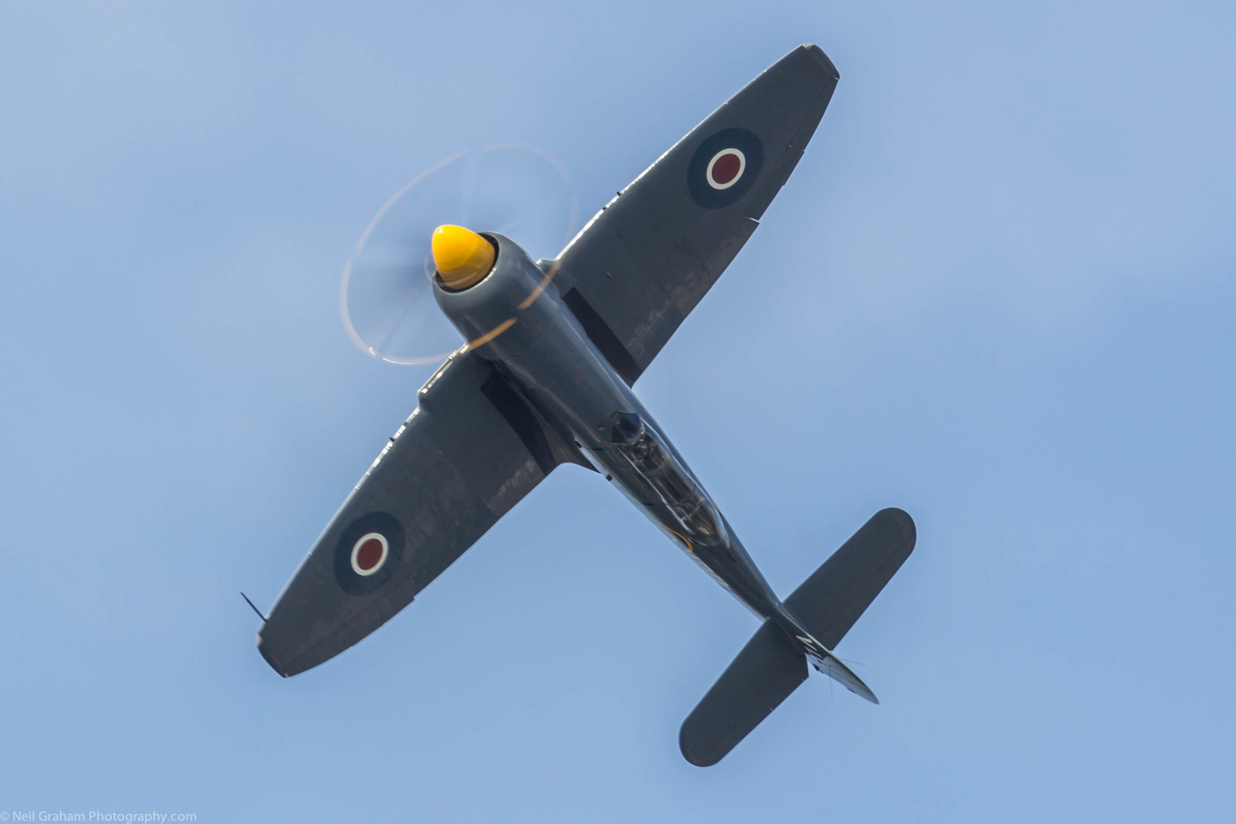 Hawker Seafury from the Royal Navy Historic Flight