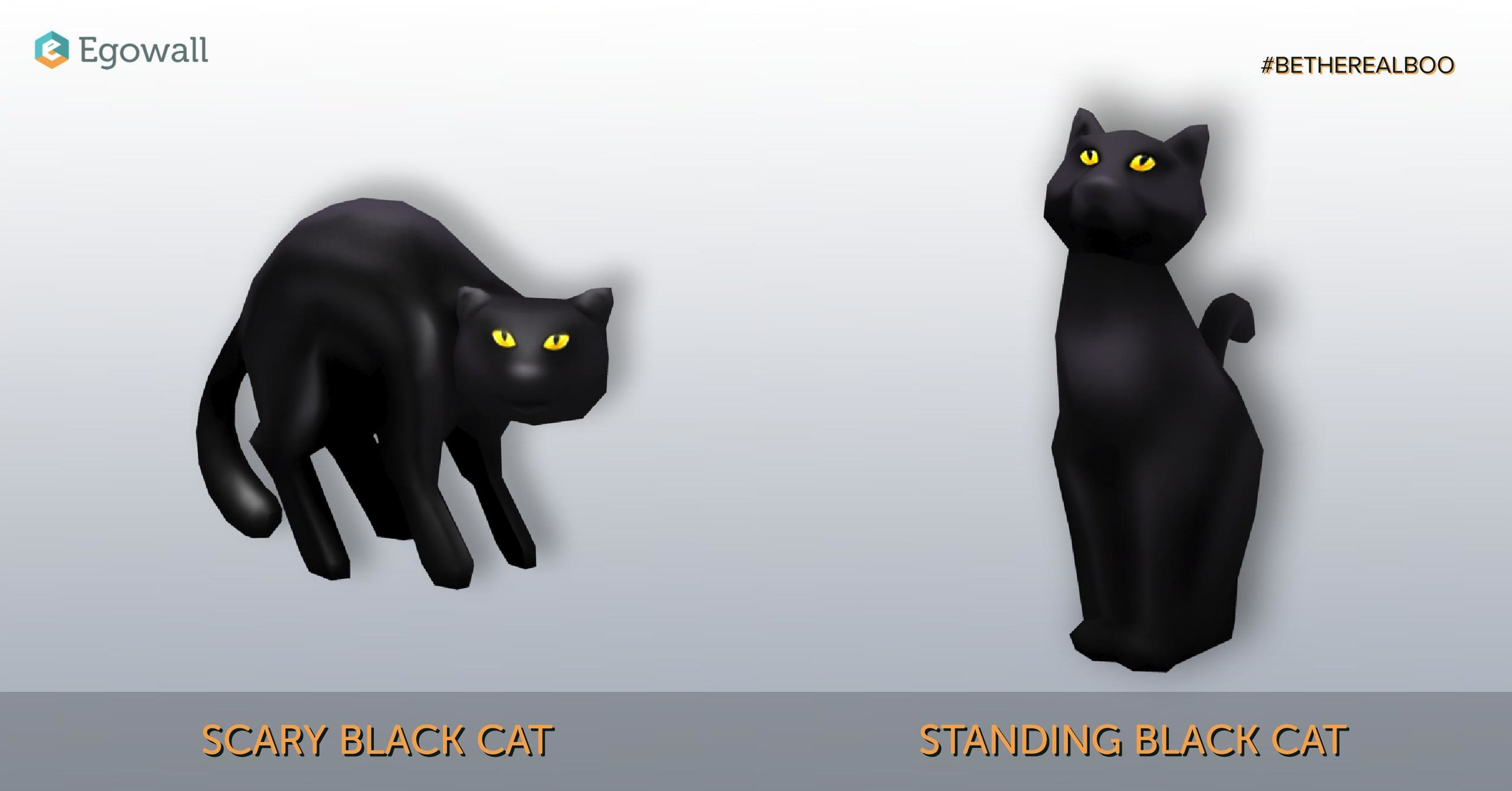 Two of Our Three Black Cat Assets