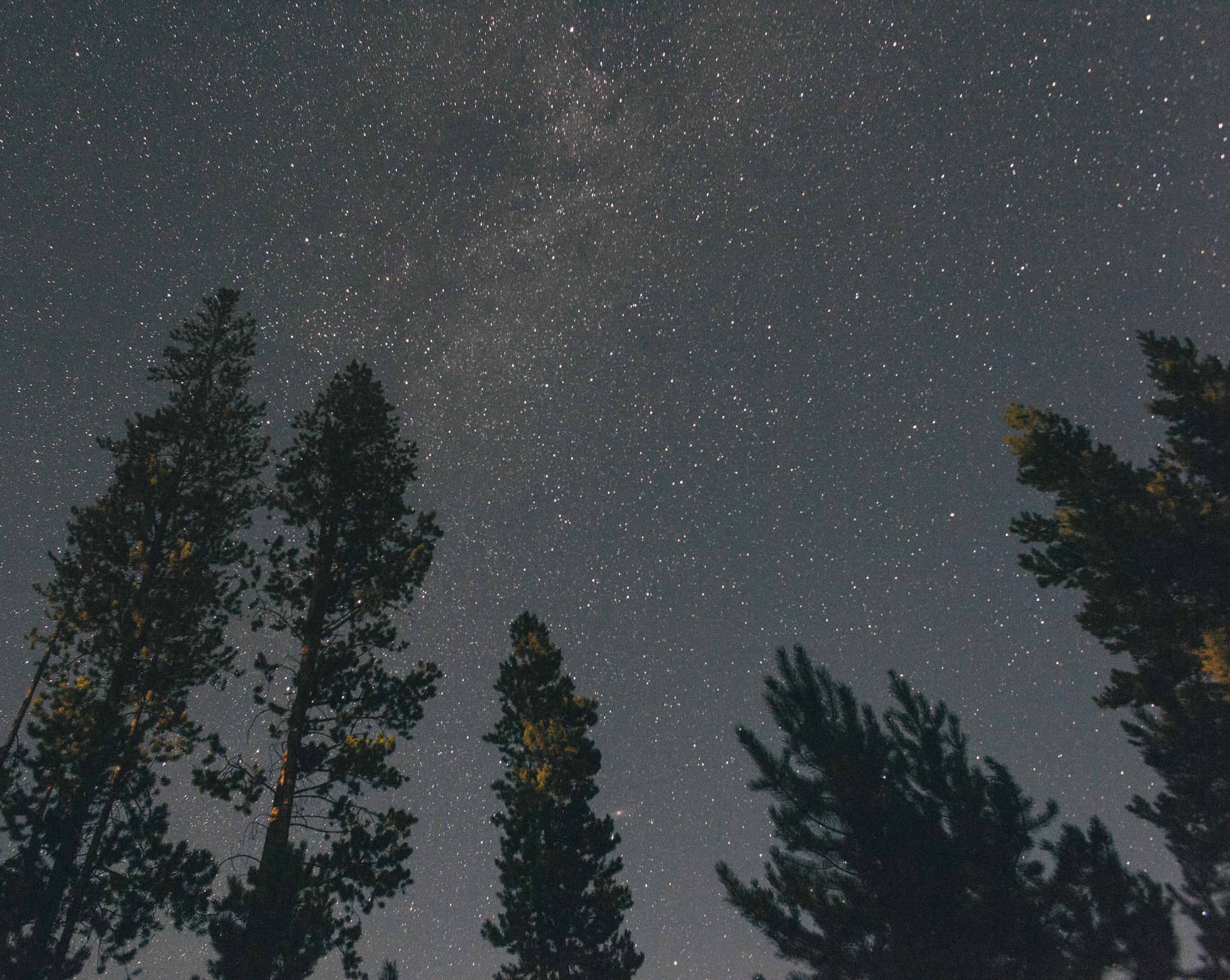 Stary Night.jpg