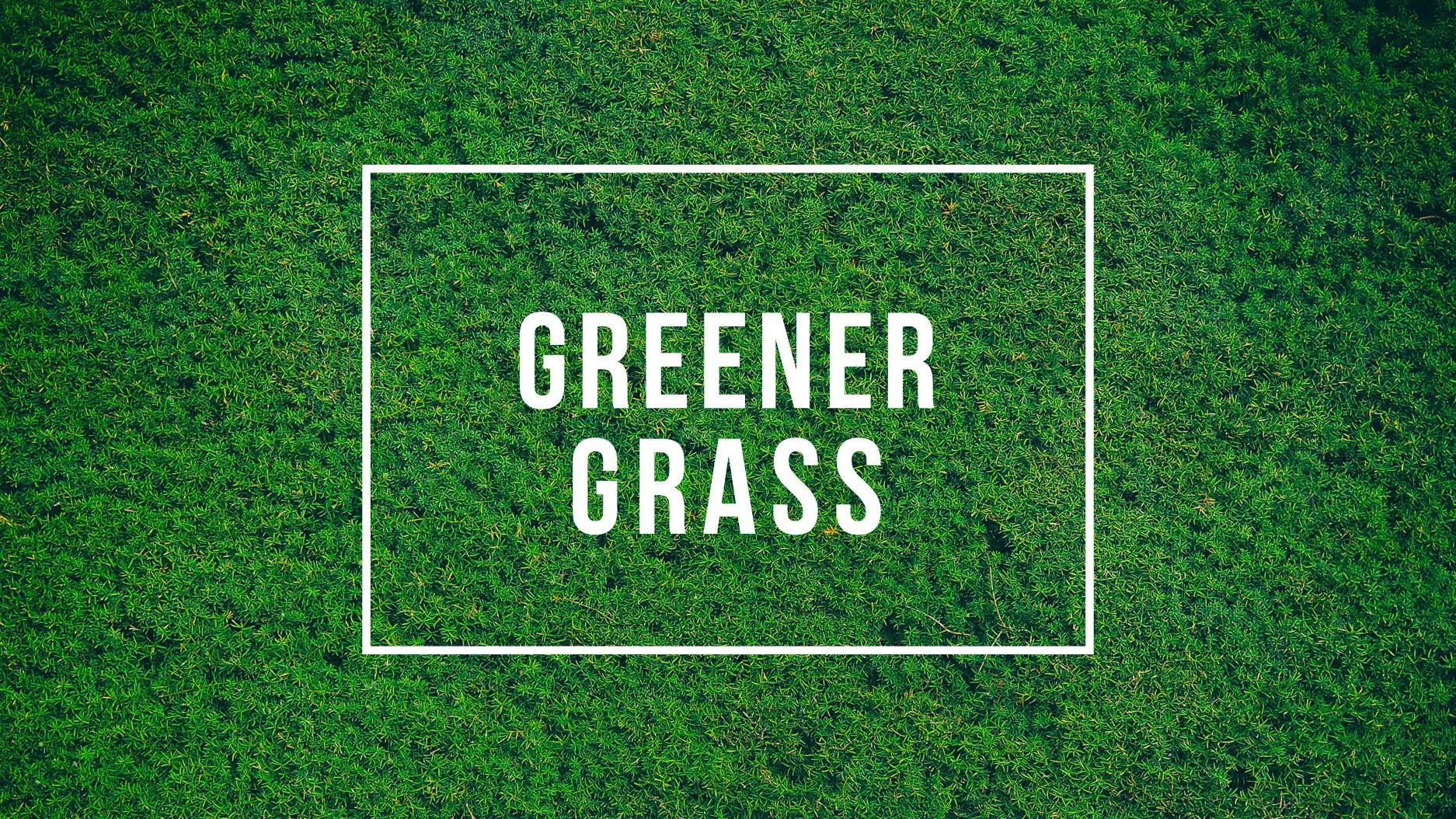 greenergrassstill.jpg