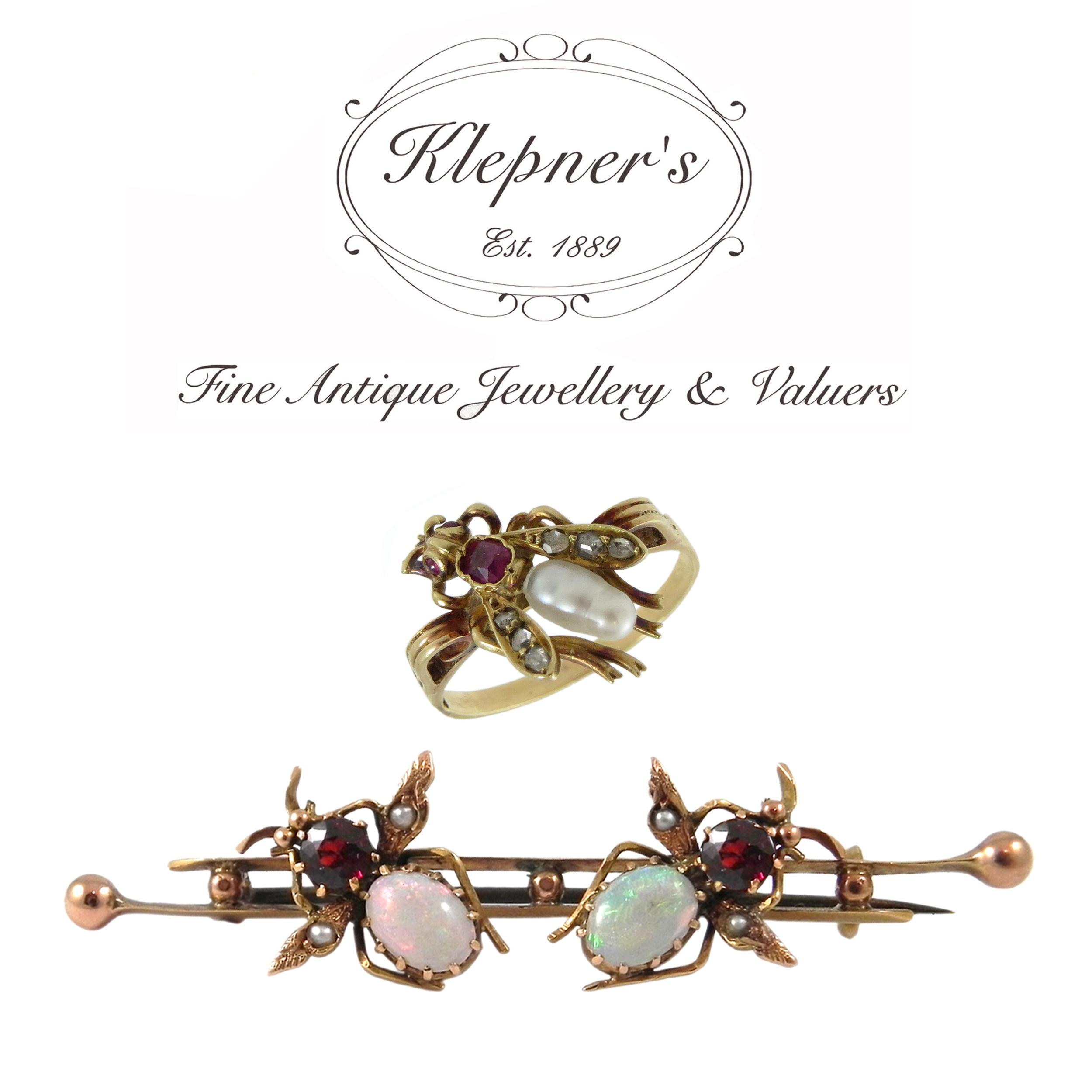 Victorian Bug Brooch and Ring.JPG