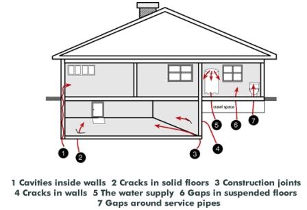 Radon_housechart1.jpg