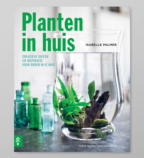 planten_in_huis_2.jpg