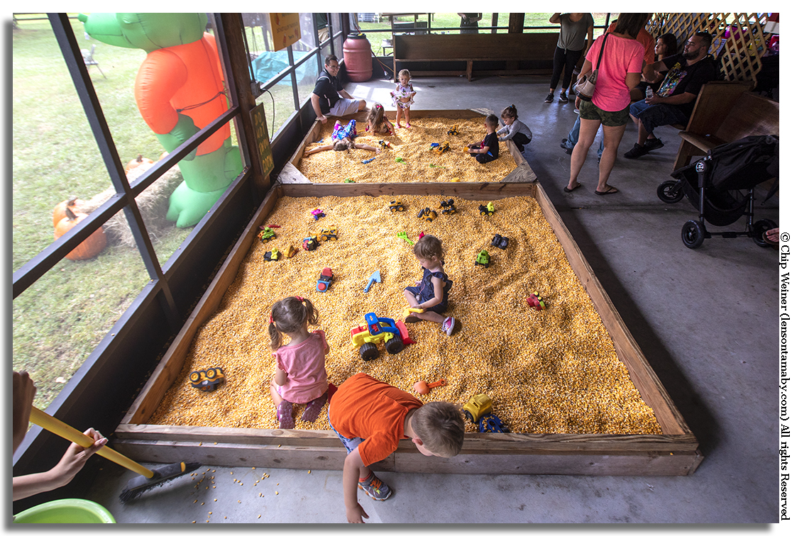 There's corn in that there sandbox. Kids get a play area of their own inside the enclosed screen porch and country store. Check out the little girl at the top making a corn angel! I wanted to try it out but if your over 6-years-old forget it.