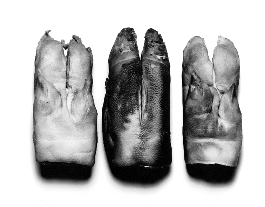 Three Pig's Feet.jpg
