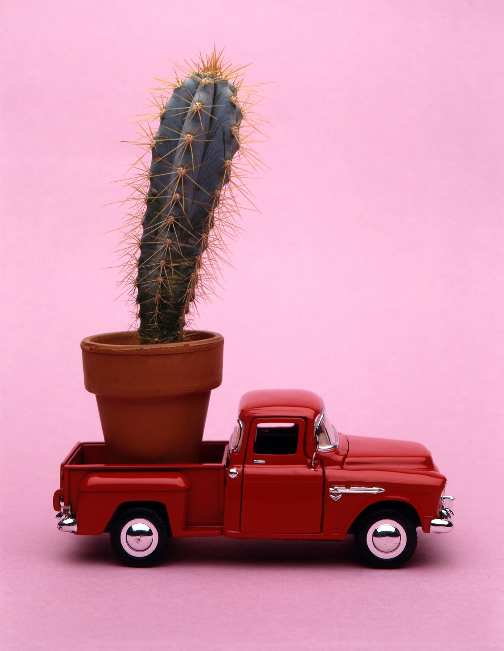 truck031.jpg