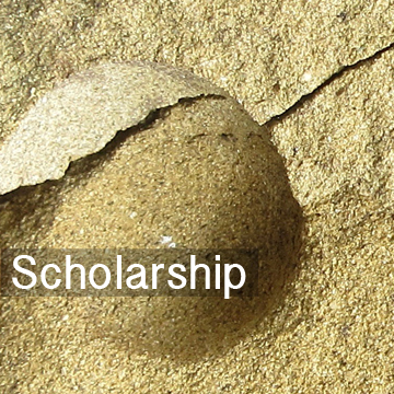 scholarship_v4.jpg
