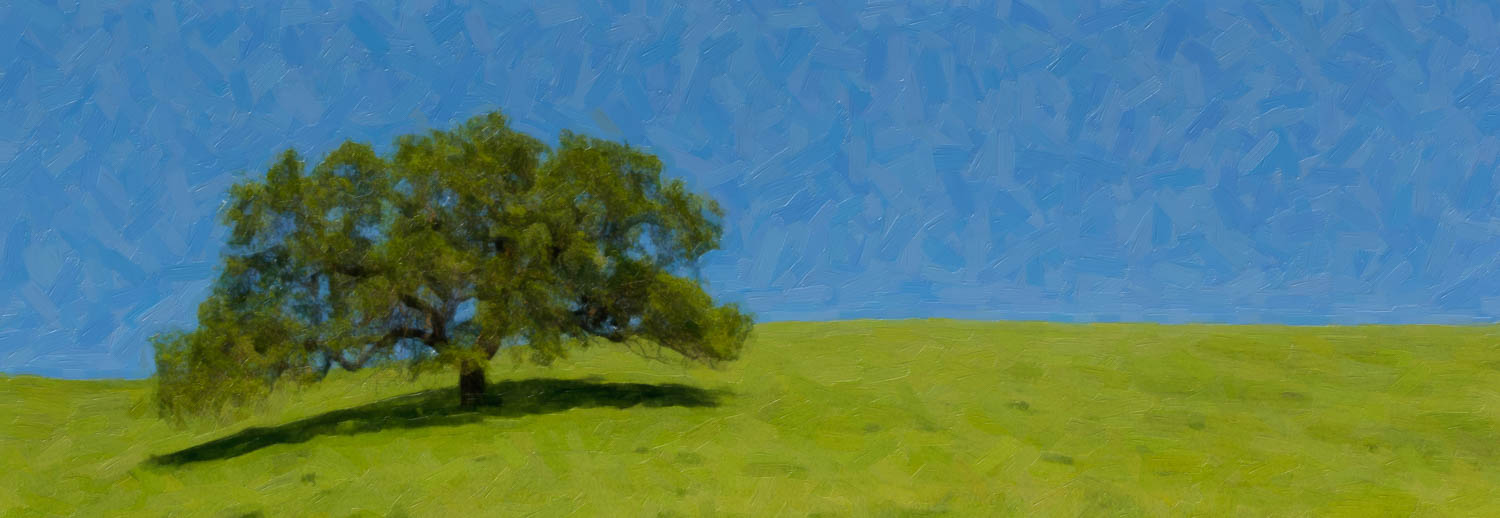 Tree on the Hill