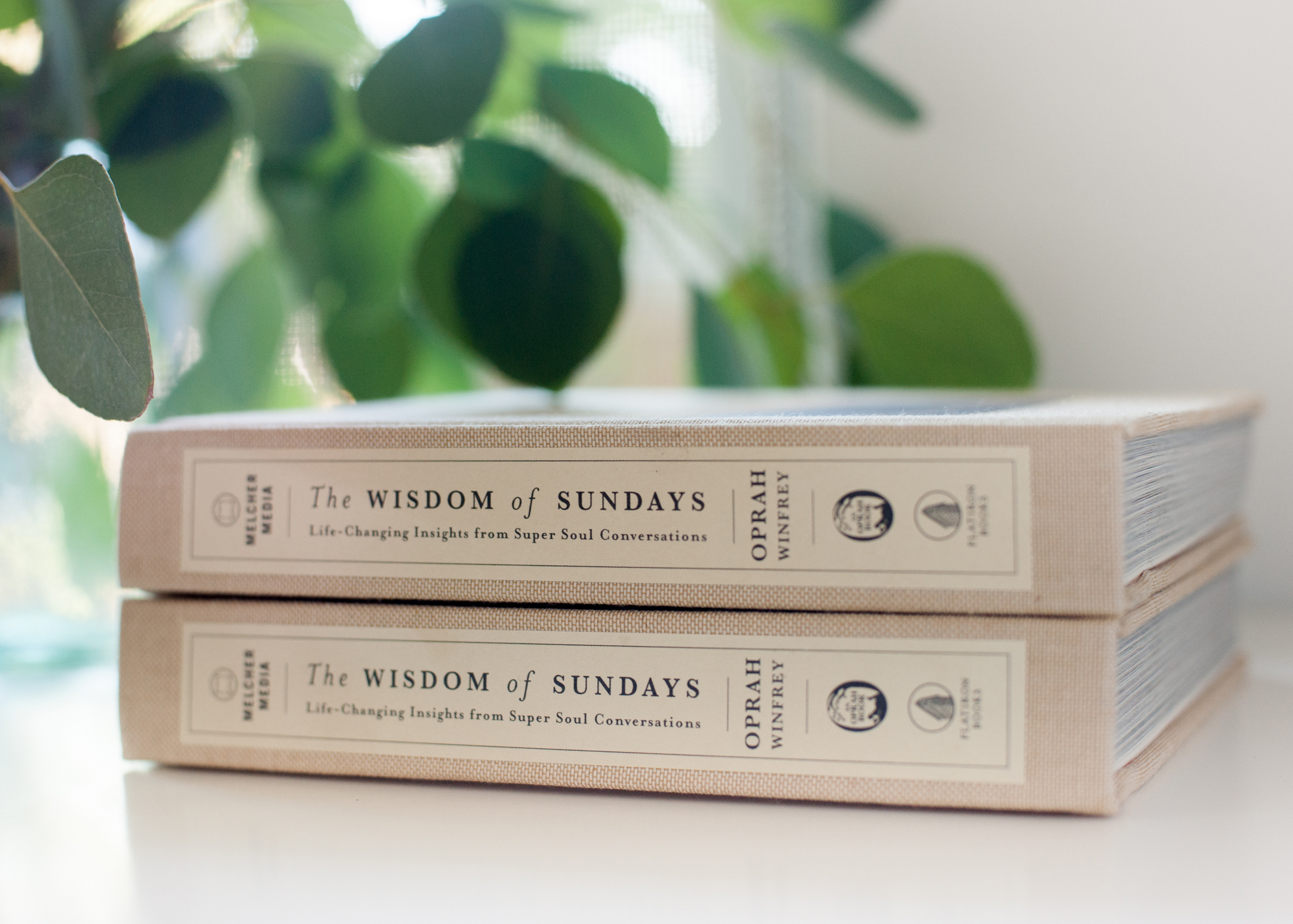 Melissa Gidney Daly_The Wisdom of Sundays 8.jpg