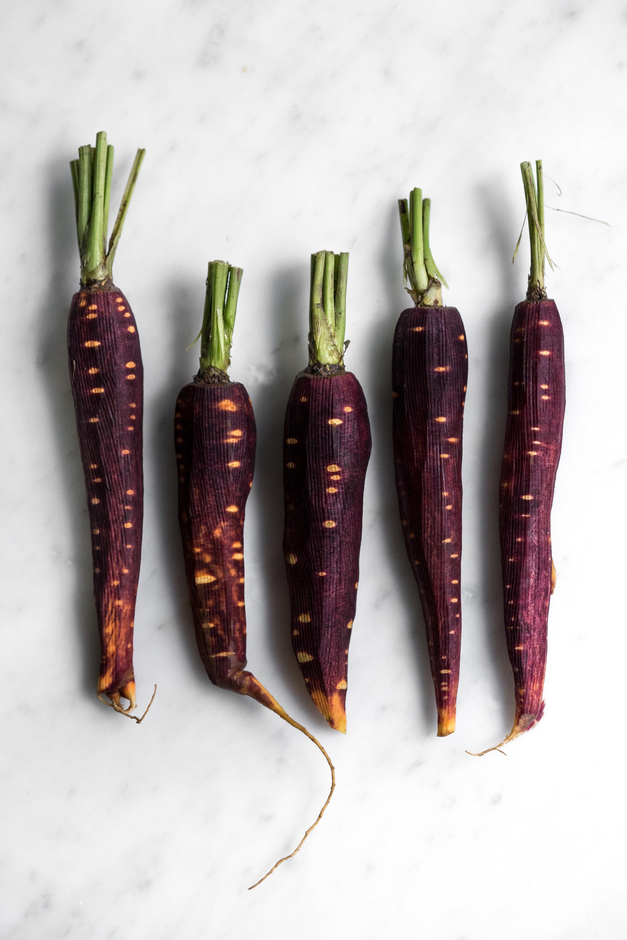 carrot quinoa-2-2.jpg