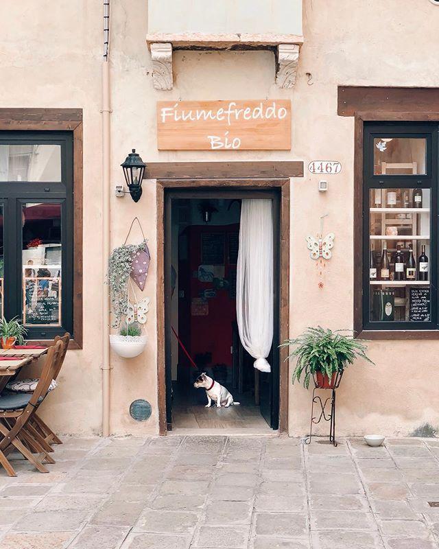 Venice, I adore you. #gligstravels ⠀⠀⠀⠀⠀⠀⠀⠀⠀ ⠀⠀⠀⠀⠀⠀⠀⠀⠀ ⠀⠀⠀⠀⠀⠀⠀⠀⠀ ⠀⠀⠀⠀⠀⠀⠀⠀⠀ ⠀⠀⠀⠀⠀⠀⠀⠀⠀ #tasteintravel#trottermag#clubsocial#travel#hotel#traveltheworld#traveltheglobe#vacation#travelphotography#thediscoverer#travelblogger #tourism #venezia #adventure #travelblogger #travelbug#globetrotter#ttot #venice #nature #wellness #prettylittleitaly #meditation #travellersnotebook #vscocam #travelinstyle #travelstagram #italia #sonyalpha #travelitalia