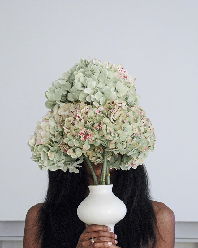Five years ago today. A different time, when I had more time. A different place, when I had less space. I miss having more time for creative play with hydrangeas. I need more of this in my life. 💚 ⠀⠀⠀⠀⠀⠀⠀⠀⠀ ⠀⠀⠀⠀⠀⠀⠀⠀⠀ ⠀⠀⠀⠀⠀⠀⠀⠀⠀ ⠀⠀⠀⠀⠀⠀⠀⠀⠀ ⠀⠀⠀⠀⠀⠀⠀⠀⠀ ⠀⠀⠀⠀⠀⠀⠀⠀⠀ ⠀⠀⠀⠀⠀⠀⠀⠀⠀ #livefolk#thatsdarling#pursuepretty#darlingmoment#darlingweekend#liveauthentic#vscocam #clubsocial#health#mindbody #iamwellandgood#caughtflowerhanded  #inspiredbypetals #gardening#farmers#organic#meditation #gardening #favoriteflowers #instablooms #flowermagic #caughtflowerhanded #natureinthehands #inspiredbypetals