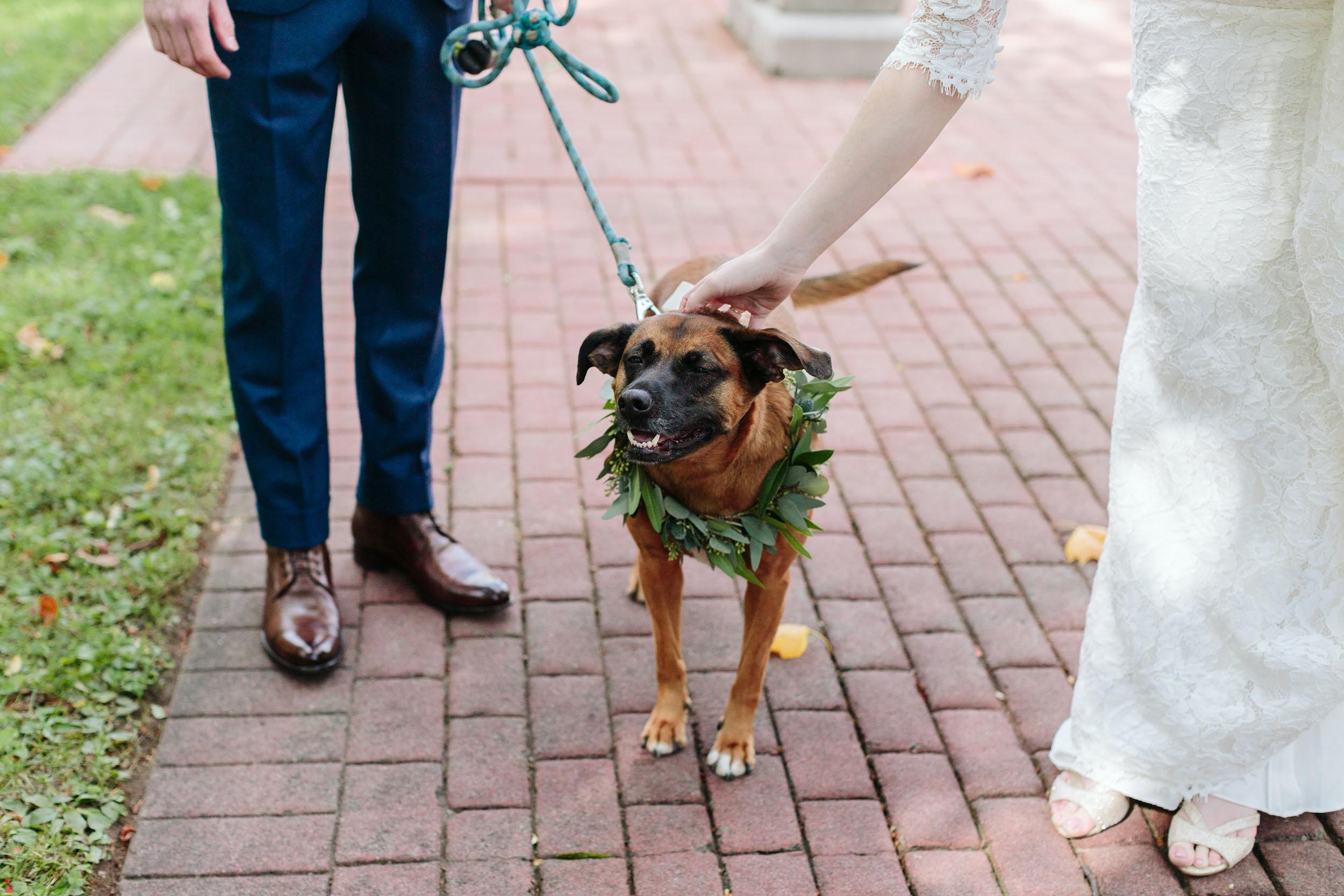 KarliCadel-Wedding-RachelChad-8856.jpg