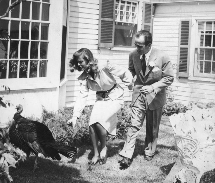 Thanksgiving Bogart (1066D).jpg