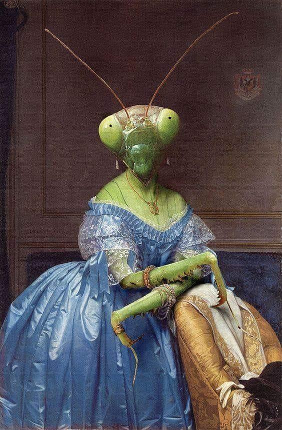 Praying mantis Ingres.jpg