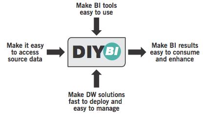 DIY BI