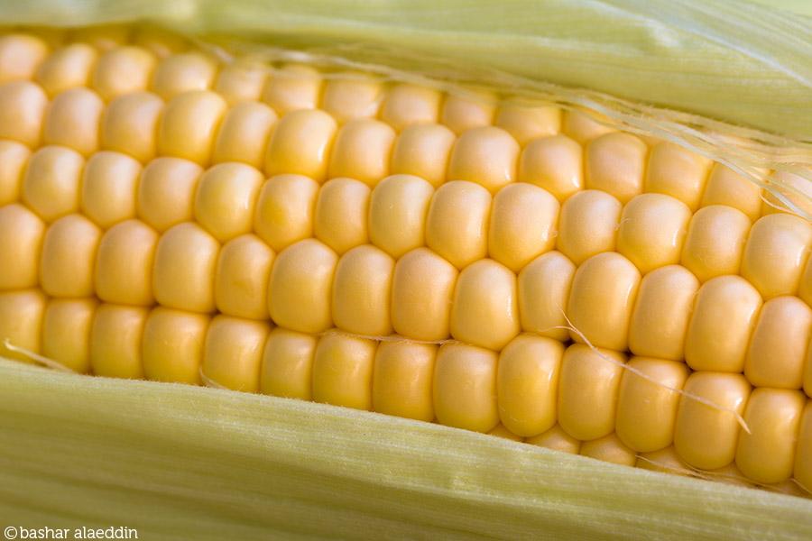 CornUpClose_900px.jpg