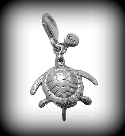 Turtle_H4.png