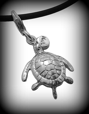 Turtle_with_band_H4.png
