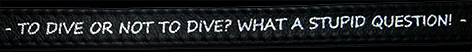 ToDiveOrNotToDive_silver_B4.png