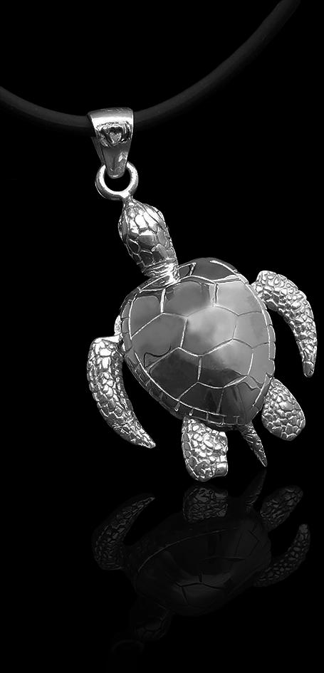 Turtle_big_back_I_H8.png