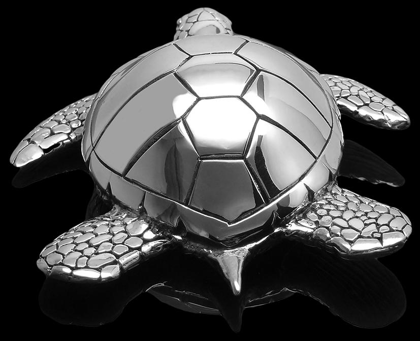 Turtle_big_back.png