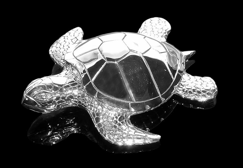 Turtle_big_front_left_I.png