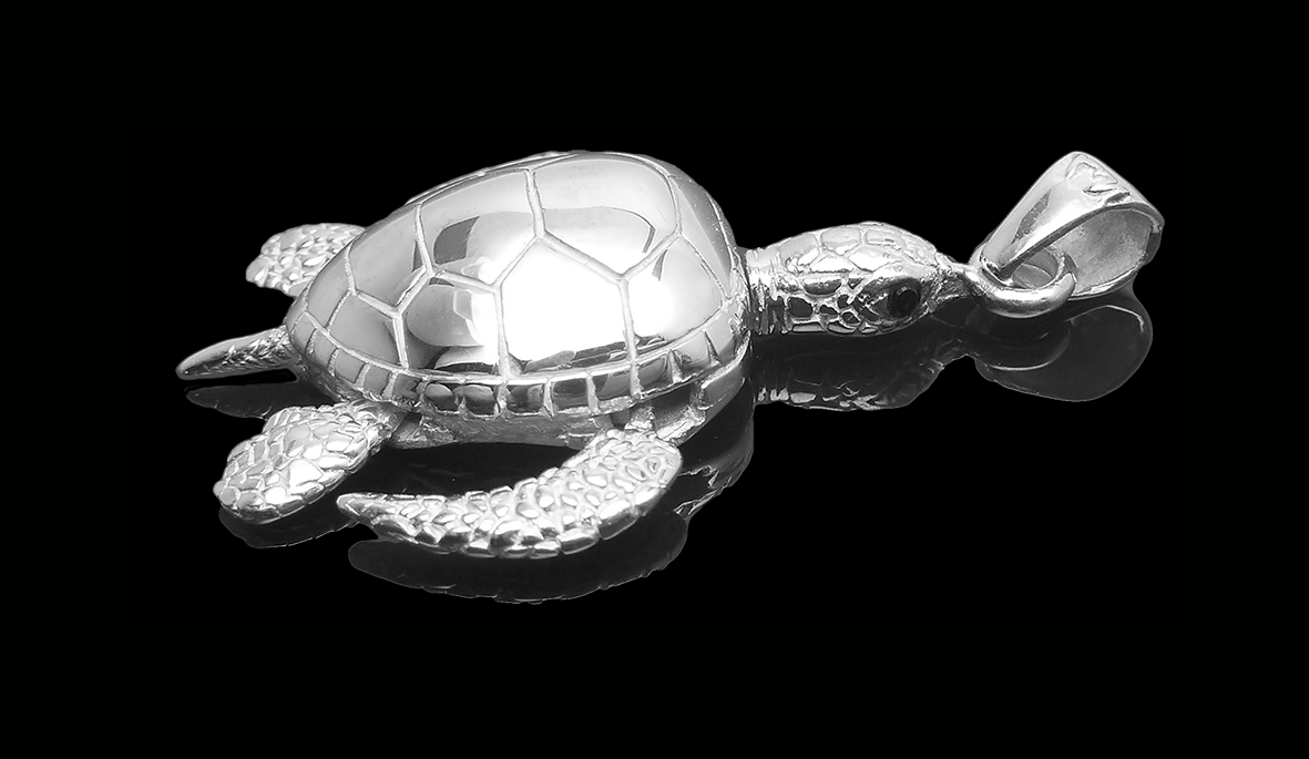 Turtle_Onyx_B8_web.png