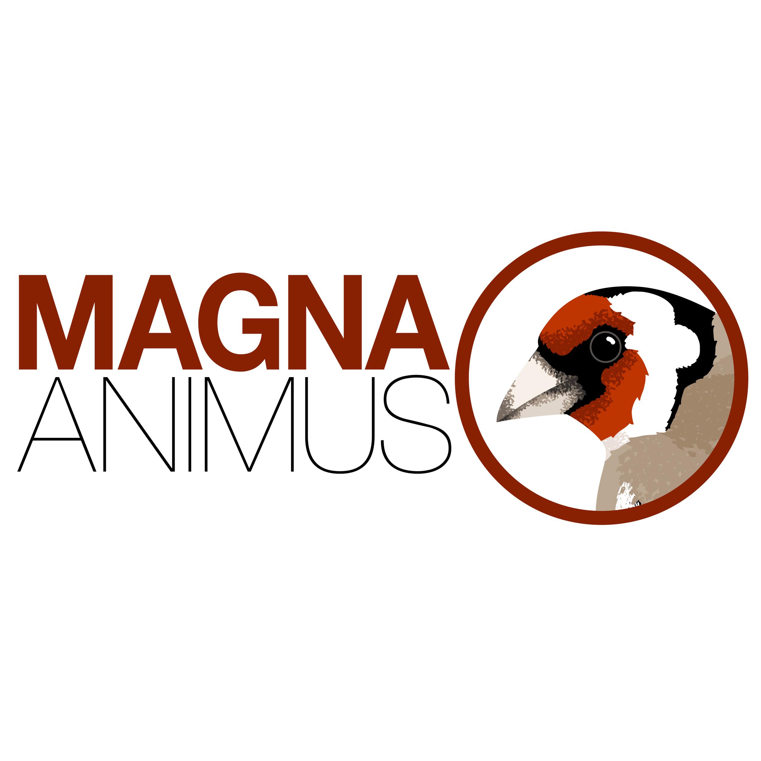 magnaanimus-01.jpg