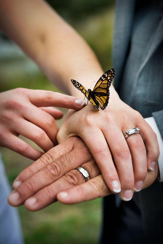 Just-Married_027.jpg