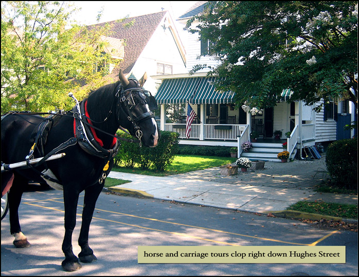 """Kids (and adults) love that the horse and carriage tours clip clop right down Hughes street. That's  """"Knight"""" there, who loves to stop in front of our home."""
