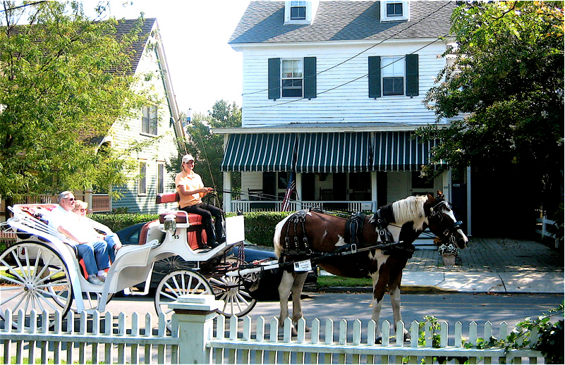 Horse & Carriage in front of our Guest House